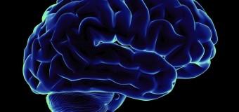 Ежедневные упражнения помогут поддержать умственные способности