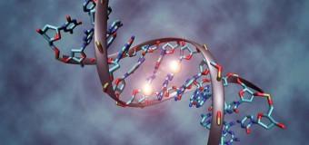 Свинец влияет на экспрессию генов в течение всей нашей жизни