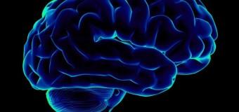 Опасность диабета для мозга зависит от типа заболевания