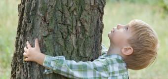 Эксперты советуют лазать по деревьям, чтобы улучшить память