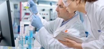 Животный вирус может стать причиной развития рака у людей