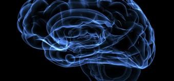 Ученые исследовали грань между умеренными нарушениями и болезнью Альцгеймера