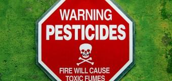 Пестициды более чем в 2 раза увеличивают риск развития диабета