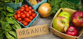 Органические продукты снижают уровень пестицидов в организме детей