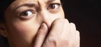 Люди воспринимают запах смерти как угрозу
