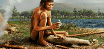 Первобытные люди спали столько же, сколько и современные
