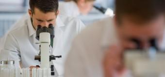 Возбудители рака могут заживлять хронические язвы