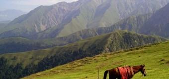 Азербайджанские долгожители: секреты счастливой жизни (ВИДЕО)