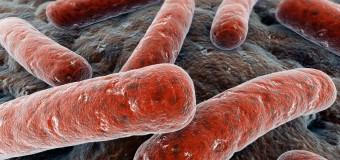 На распространение туберкулеза влияют социальные факторы