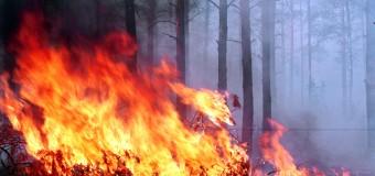 Учёные: Пожары повышают риск болезней сердца