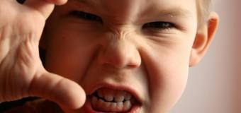 Способность распознавать эмоции снижает уровень агрессии