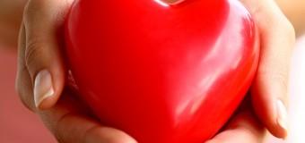 Ученые разработали «протеиновый пластырь» для сердца