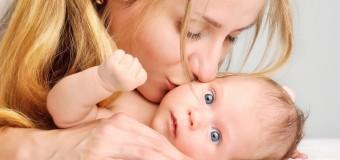 Ученые научились манипулировать мужской агрессией и материнским инстинктом